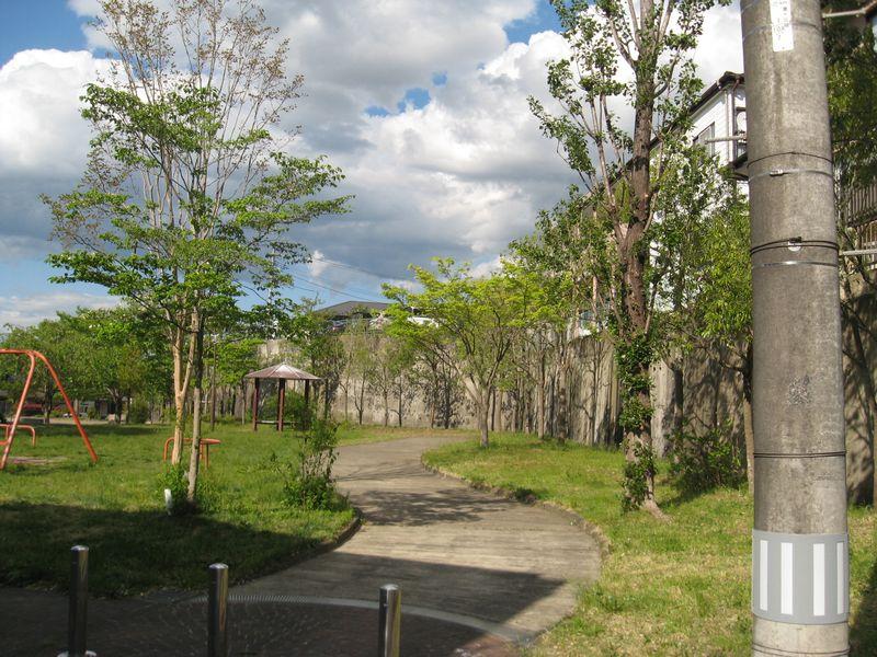 公園の樹木の整枝
